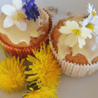 Dandelion cupcakes with sunflower seeds