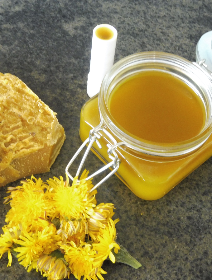 Dandelion salve and lip balm – good for your skin and fun to make
