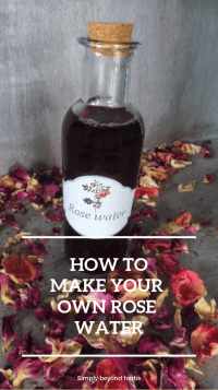Discover revitalizing rose water benefits, its uses in cosmetic and in other areas, DIY video and easy steps how to make your own rose water.
