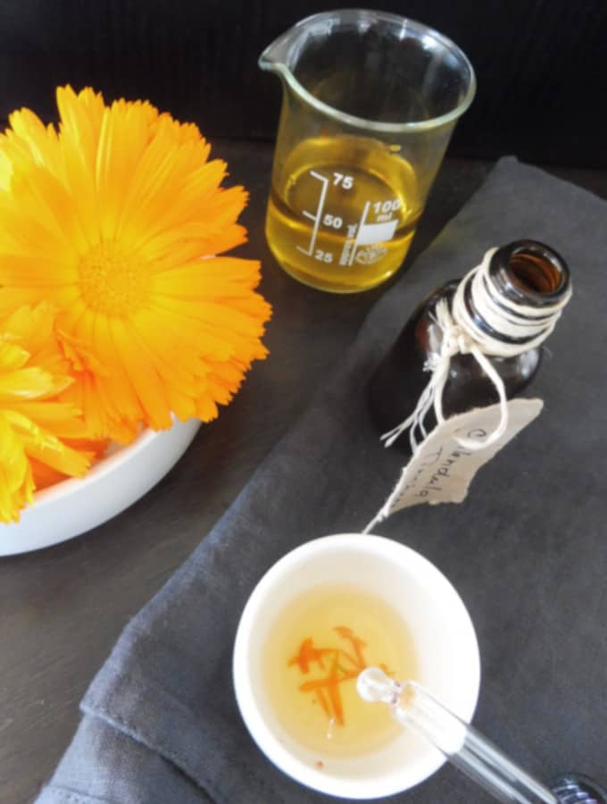 calendula tincture with marigold flower