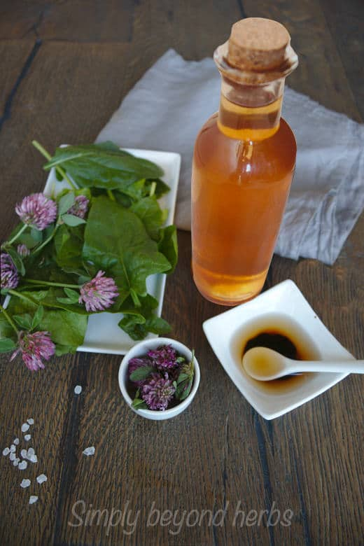 red clover vinegar used as a salad dressing