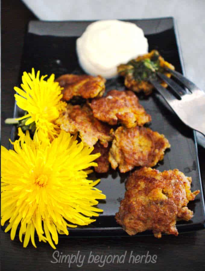 fried dandelion blossoms with whipped cream