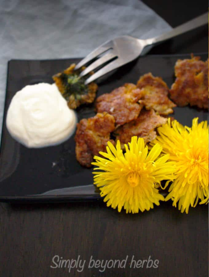 The sweet taste of fried dandelions is highlighted with whipped cream dip or maple syrup toppings.