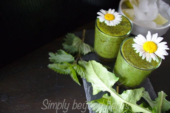 Green dandelion nettle smoothie