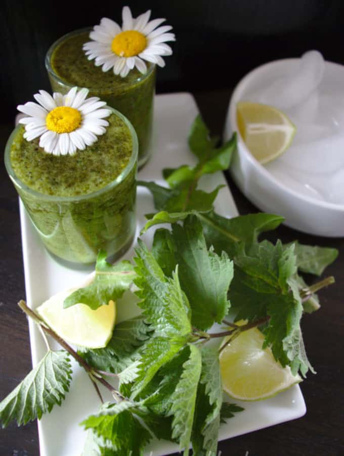 green smoothie with dandelions and nettle young leaves