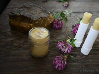 Red Clover lip balm