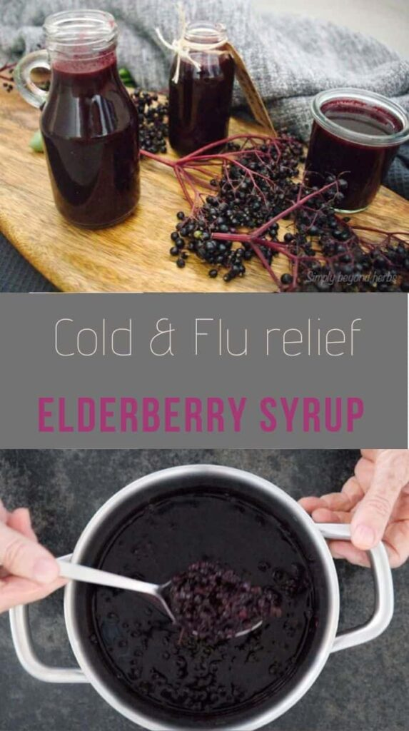 Homemade Elderberry syrup to ease cold and flu ...