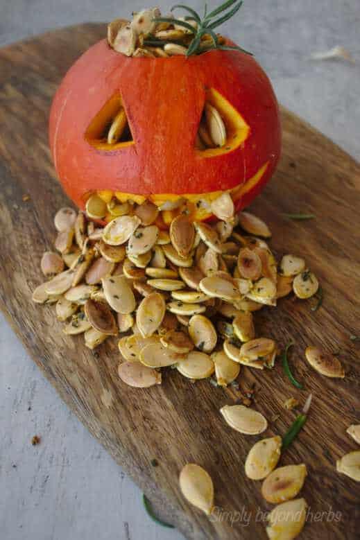 pepitas with halloween pumpkin