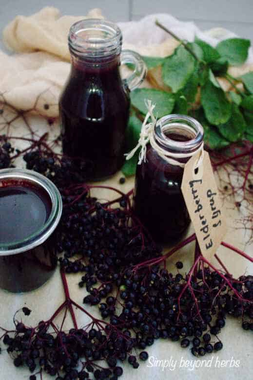 bottles filled with homemade elderberry syrup