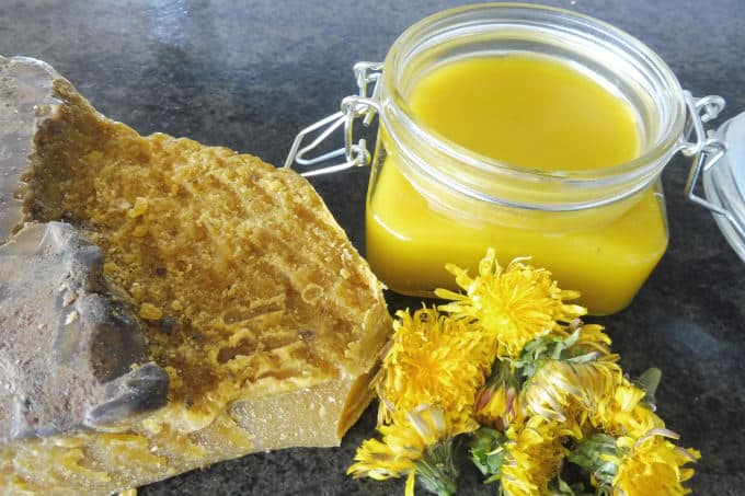 dandelion salve with beeswax and coconut oil