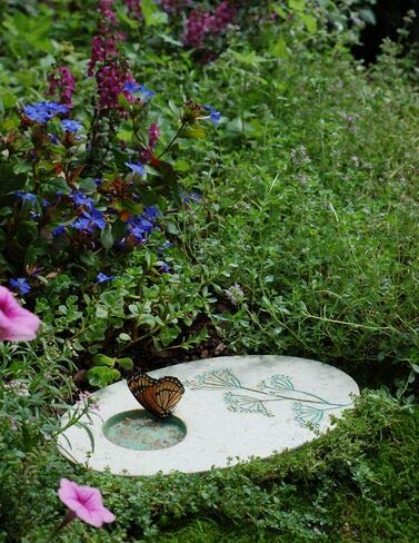 Outdoor Butterfly Puddling Stone