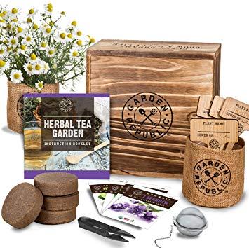 Indoor Herb Garden Seed kit
