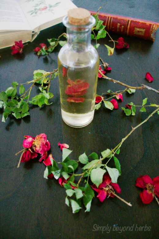 how to make rose water and its uses
