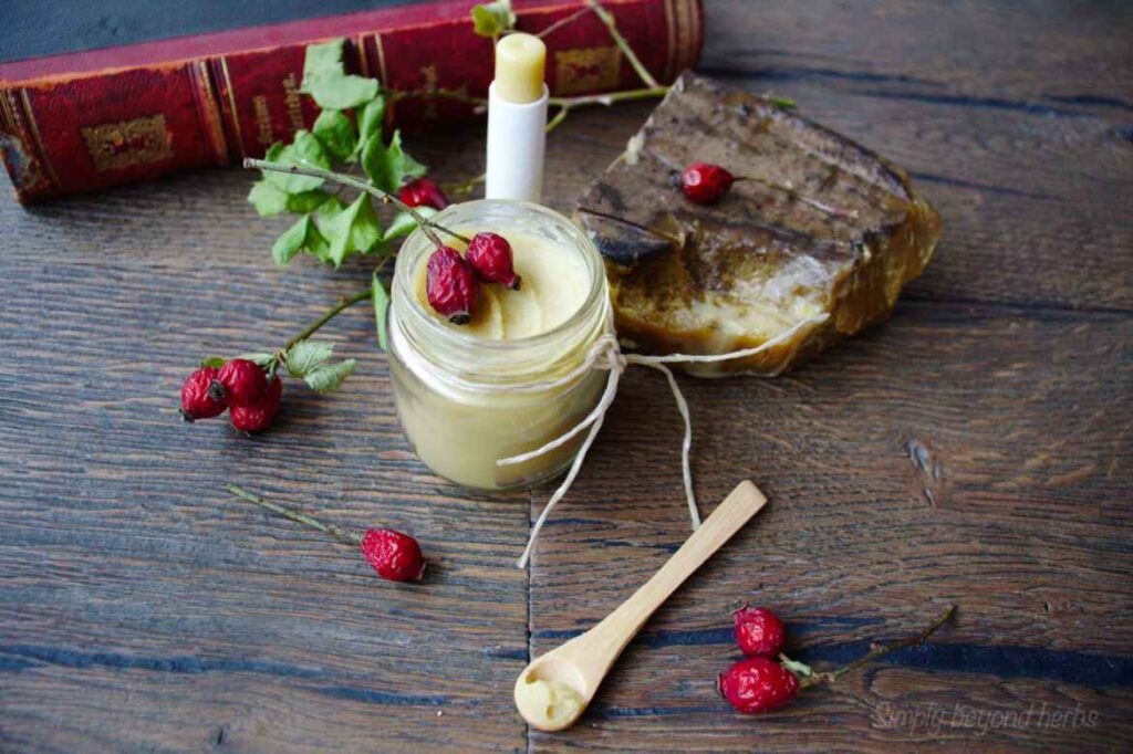 DIY eye cream with rosehips for