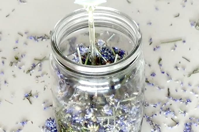 diy lavender oil from scratch
